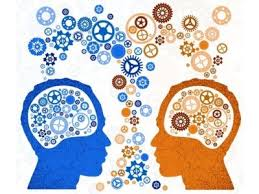 cerveau fonctionnement cognitif et relationnel