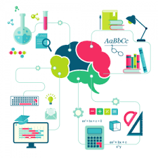 fonctionnement du cerveau