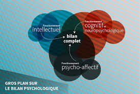 description et schématisation du bilan psychologique, fonctionnement intellectuel, fonctionnement cognitif et neuropsychologique, fonctionnement psycho-affectif